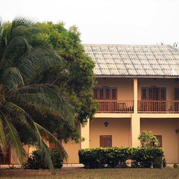 Iso palmupuu peittää puolet rakennuksesta. Rakennuksen edessä on pensaita.